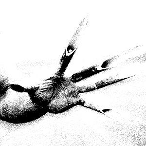 1. Fingers2 - 300 - B&W