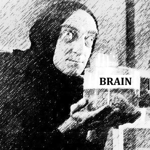 4. Brain - 2